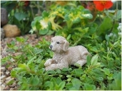 Waggs the Dog for your Fairy Garden