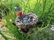 Birdsnest With Eggs and Cardinal For Miniature Fairy Gardens