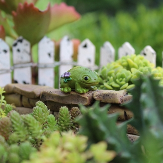 Leo the Frog for Miniature Fairy Gardens