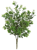 "12"" Boxwood Tree Permanent Botanical For Fairy Garden"