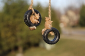 Set of 2 Sammy The Squirrel Playtime Set with Jute Rope