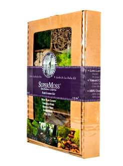 Fairy Garden Moss and Landscape Pack - Preserved All Natural