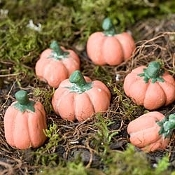 12 Fairy Pumpkins from Jerry's Patch for Miniature Fairy Gardens