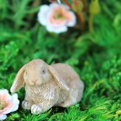 Floppy the Lop Bunny for Miniature Fairy Gardens
