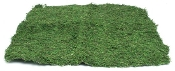"24"" x 24"" Moss Mat For Miniature Fairy Gardens"