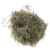 BULK Preserved Spanish Moss -  Covers Approx 12 Sq In