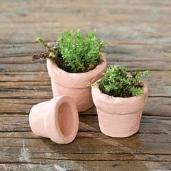 Set/3 Terra Cotta Clay Pots For Miniature Fairy Gardens
