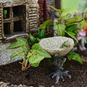 Branch Birdbath With Frog For Miniature Fairy Gardens