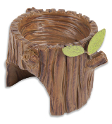Sale - Stump Planter