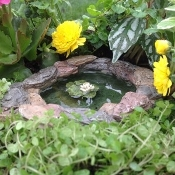 Lily Pond For Miniature Fairy Gardens
