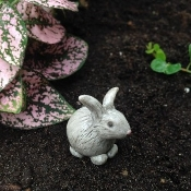 Baxter the Bunny For Miniature Fairy Gardens