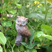 Hoot the Owl on Pick for Miniature Fairy Gardens