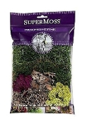 4 oz Vibrant Variety Fairy Moss Pack - Preserved