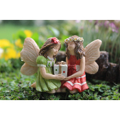 Jackie and Jenny with Gift for Miniature Fairy Gardens
