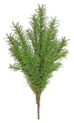 "13"" Rosemary Tree Permanent Botanical For Fairy Garden"
