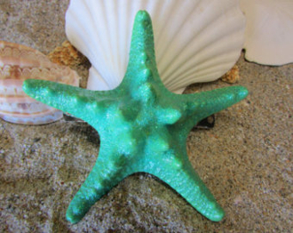 Set/6 Knobby Ocean Green Starfish for Fairy Gardens