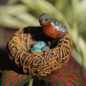 Robins Birds Nest on Pick for Miniature Fairy Gardens
