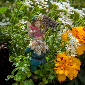 Ellie and Digby The Fairy & Gnome for Miniature Fairy Gardens