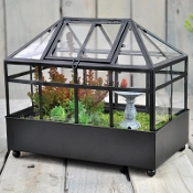 Wardian Terrarium for Miniature Fairy Gardens