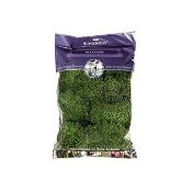 """Mood Moss"" Preserved Clumped Moss - Creates small hills"